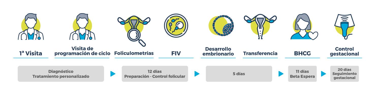Proceso Fecundación in Vitro