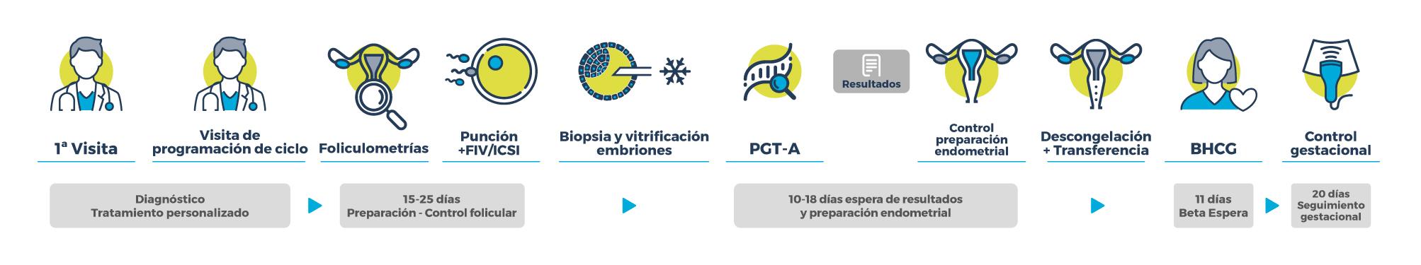 Procedimiento FECUNDACIÓN IN VITRO CON SCREENING GENÉTICO PREIMPLANTACIONAL (PGT-A)
